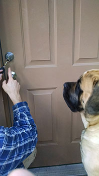 Duke Locksmith