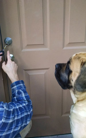Duke The Locksmith